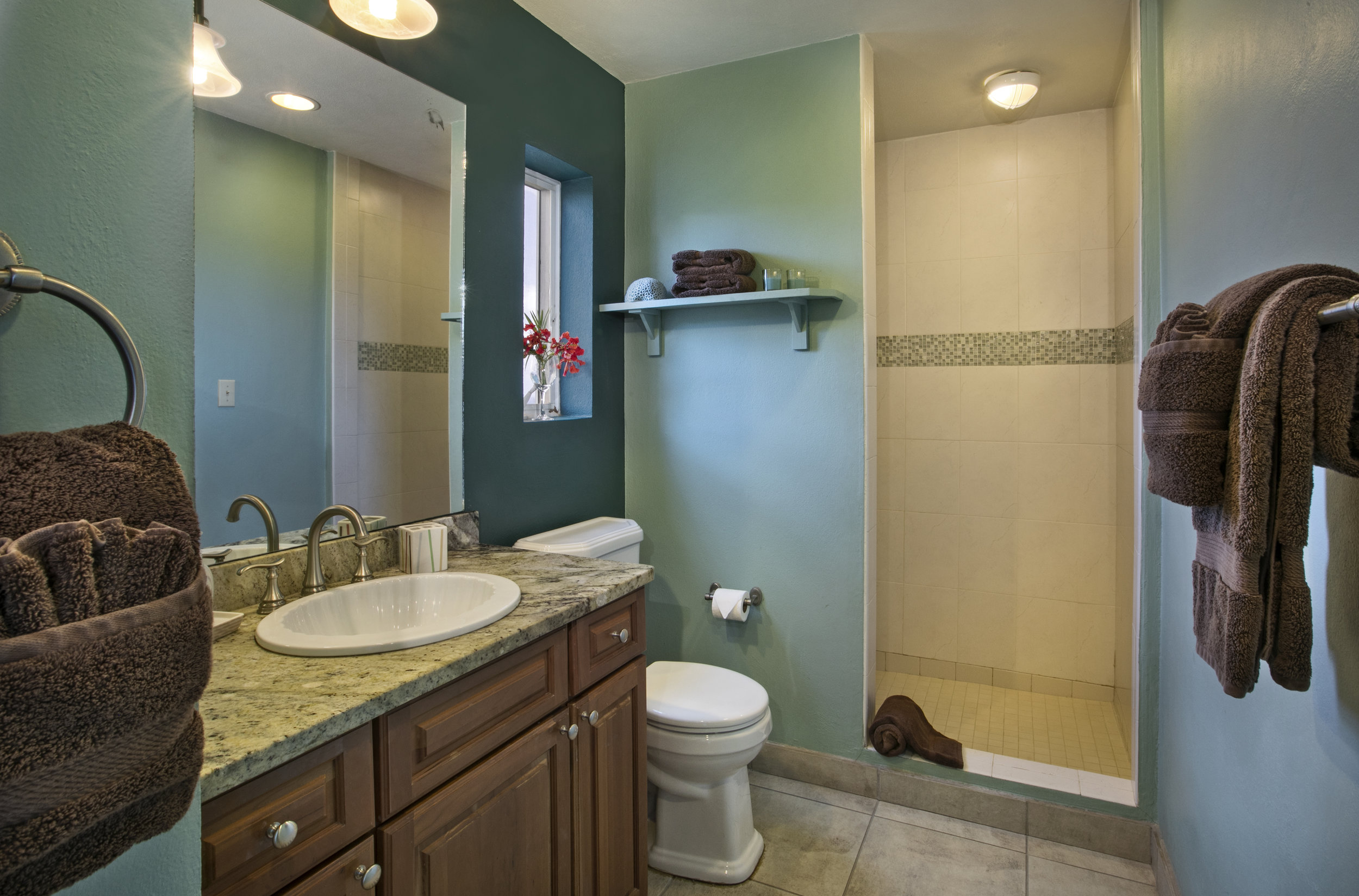 Copy of Master bath