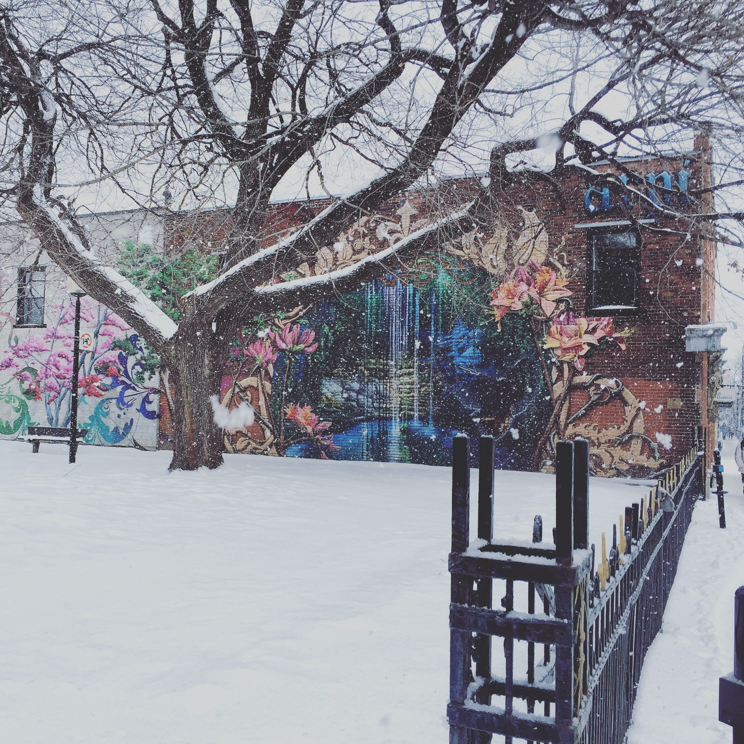 Started off with a beautiful snowy morning walk to the coffee shop