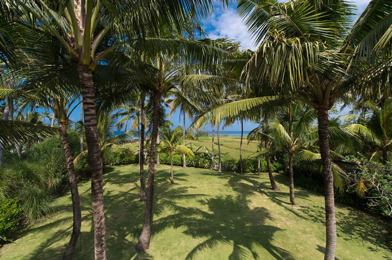 samadhana-gardens-in-front-of-master-suite.jpg