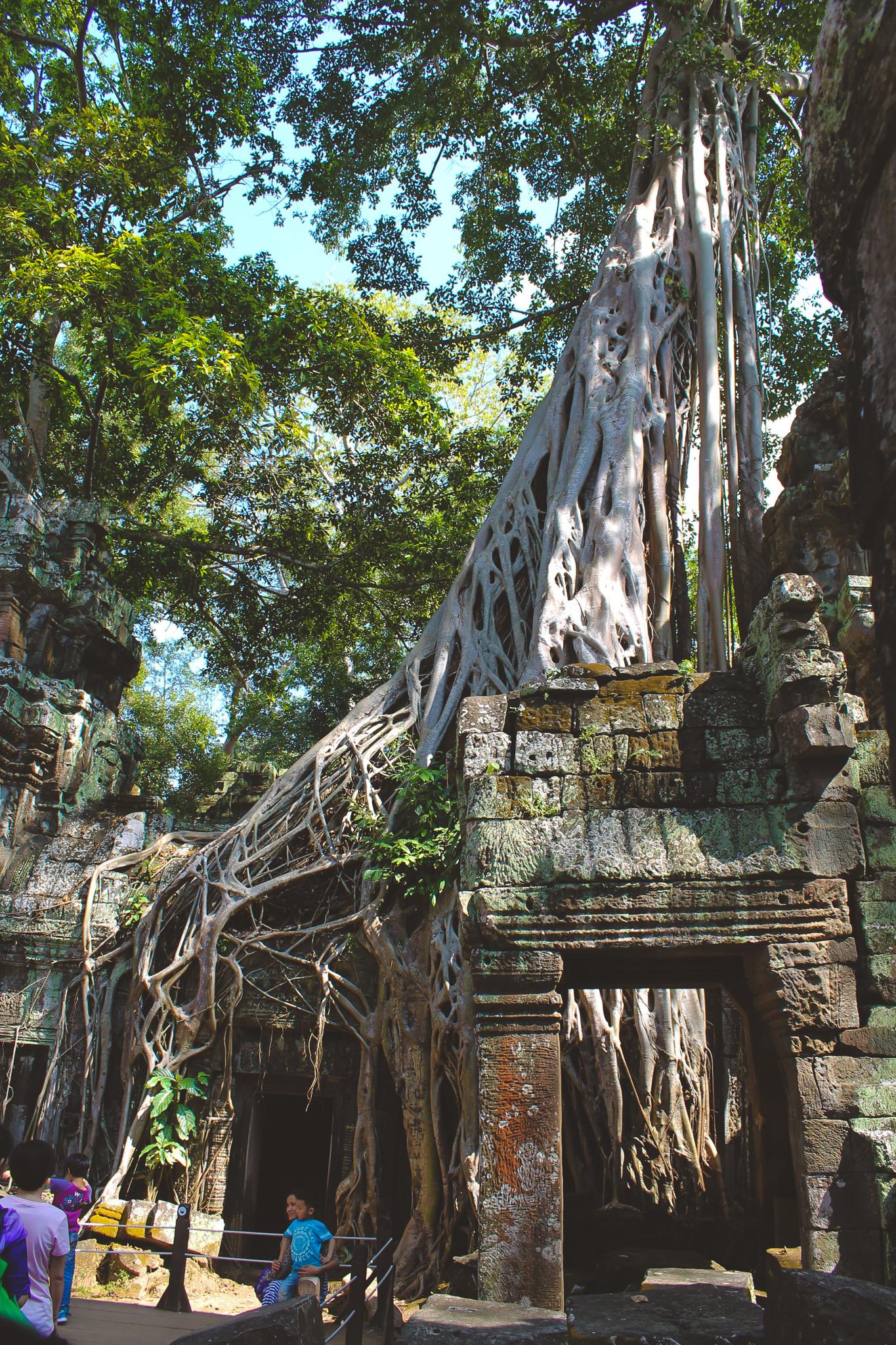cambodia blog (19 of 34).jpg