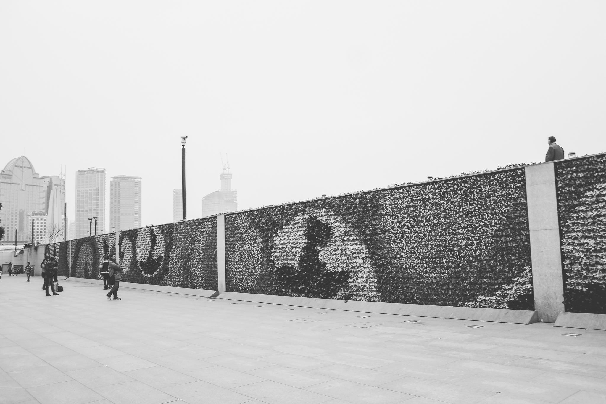 shanghai (8 of 18).jpg