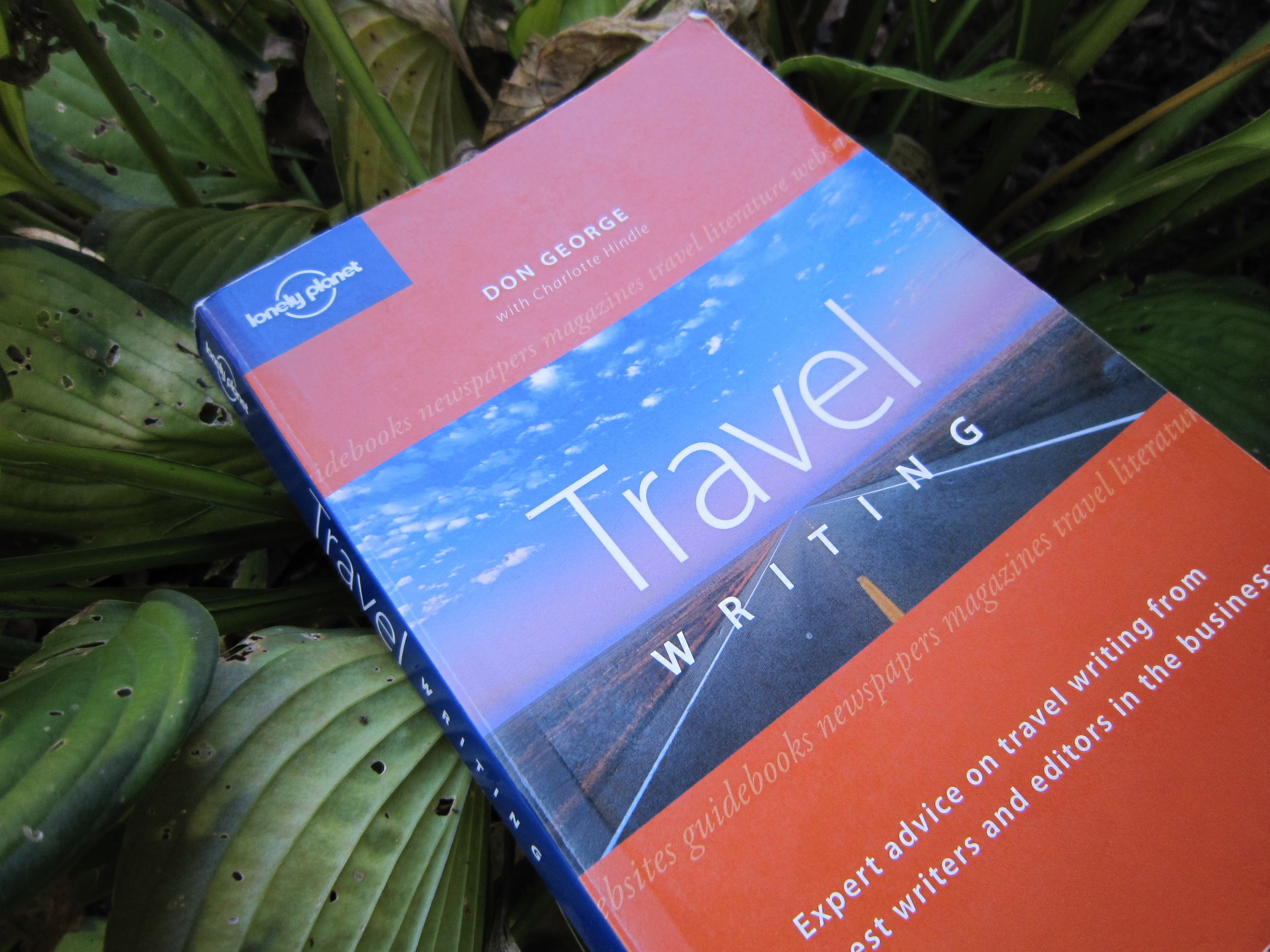 Travel Writing by Lonely Planet and Don George