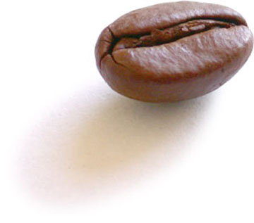 coffee-bean