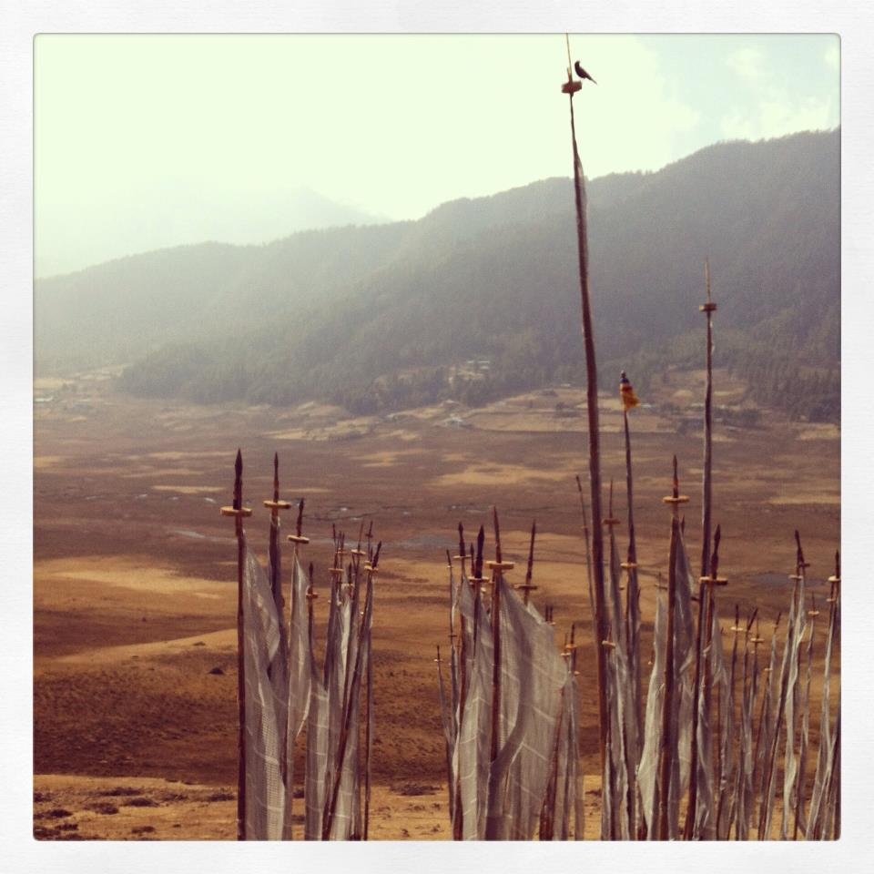 Prayer flags in Phobjikha valley, Bhutan, Instagram