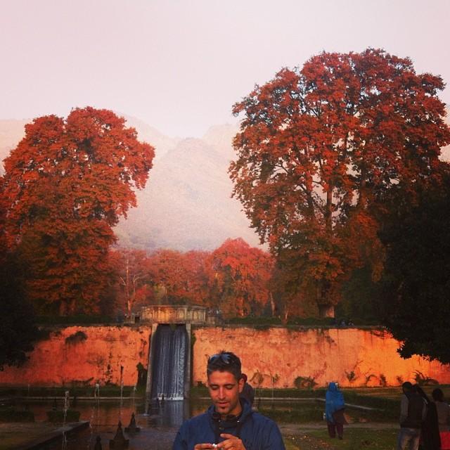Autumn in Srinagar, Kashmir, India
