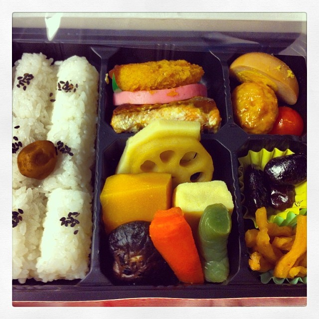Bento box on the train in Japan