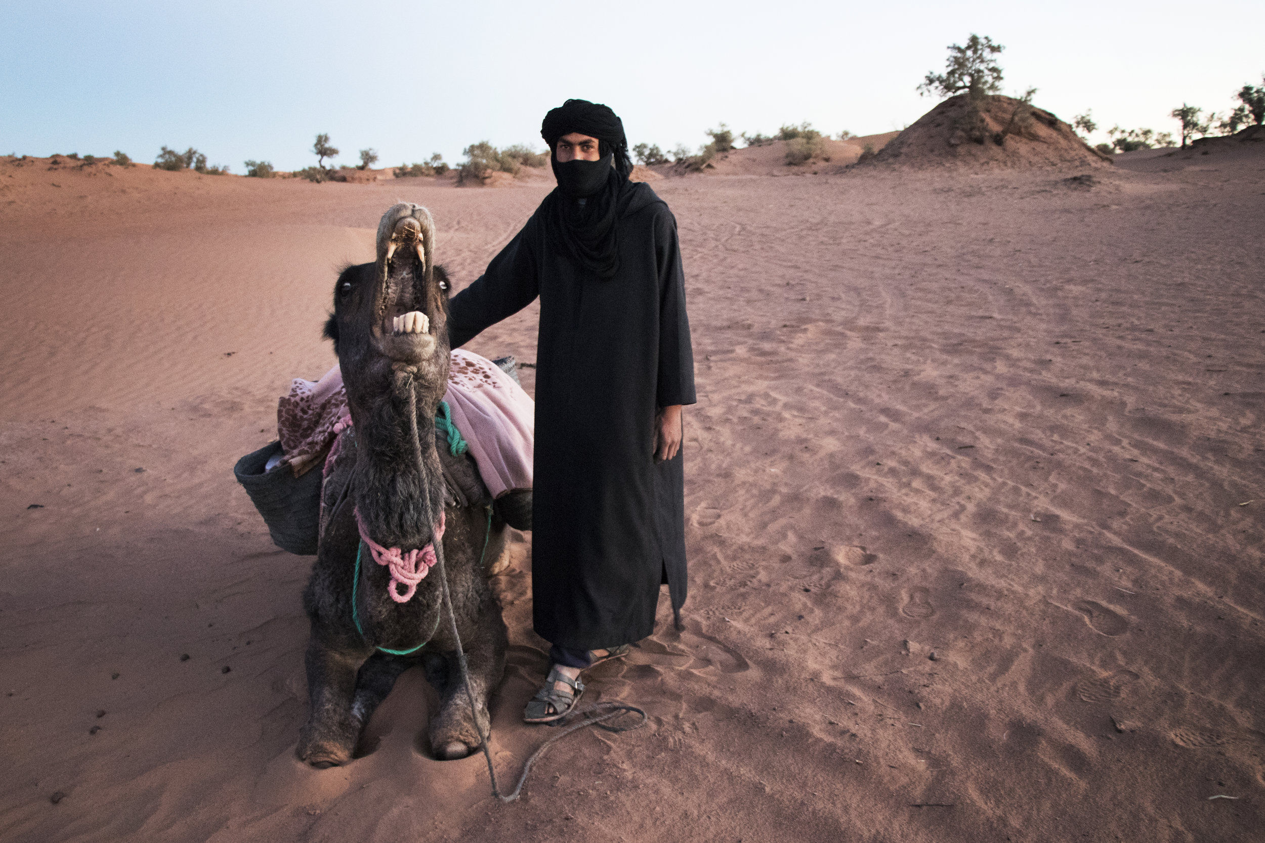 Allal and his camel who hates me