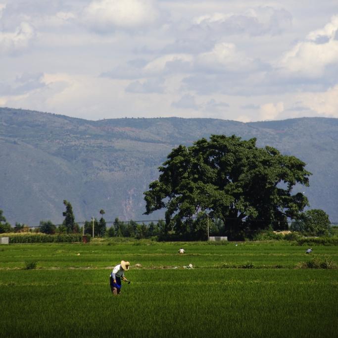 Yunnan Province - China 2011