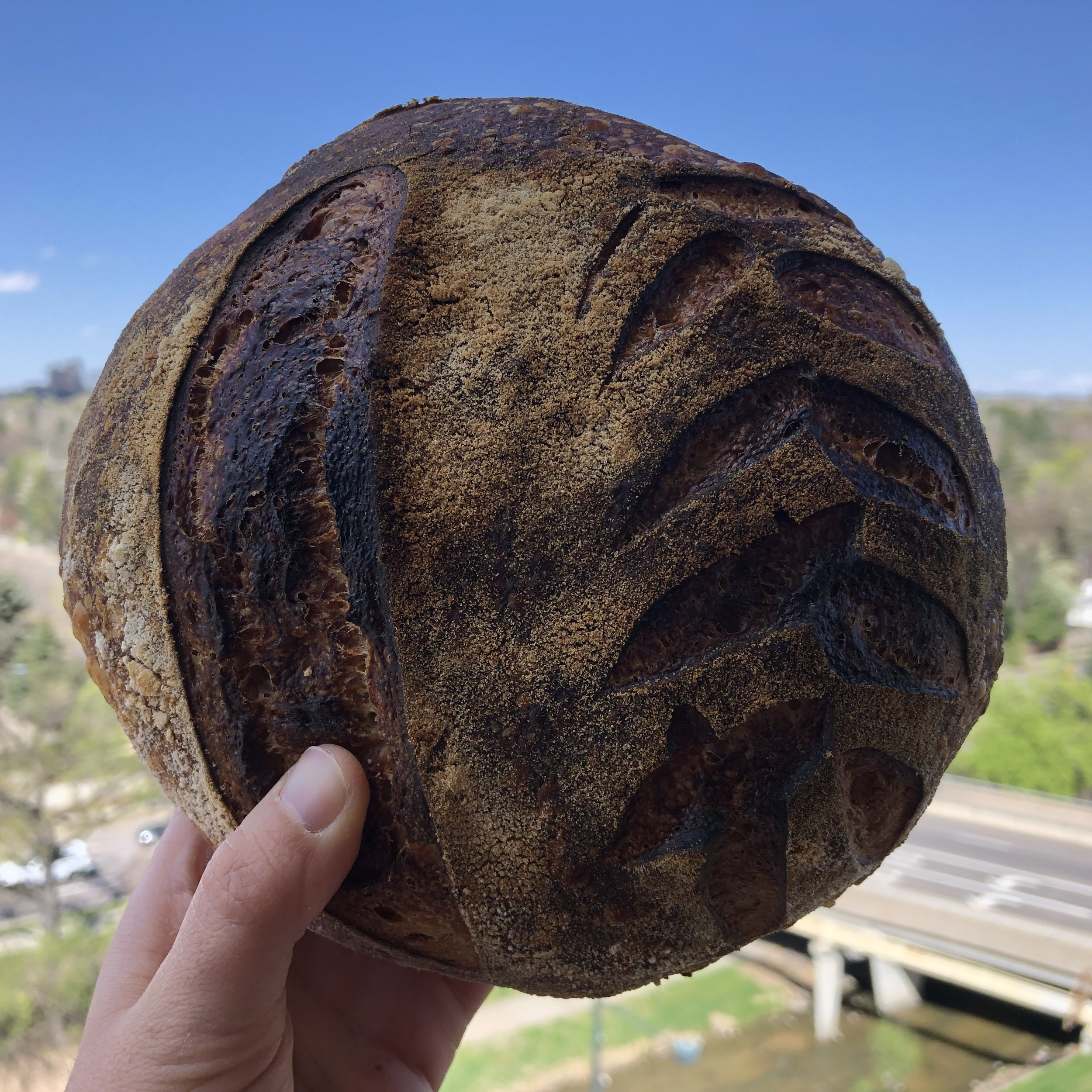 Live in Denver? - Receive weekly sourdough bread or a consultation