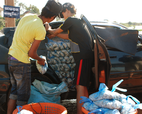Alicia Morga Cambodia packing fish
