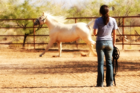 Alicia Morga white horse