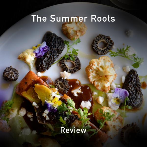 summer-roots.jpg