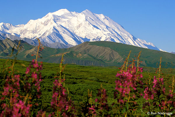 Denali, the highest mountain in the mainland United States.