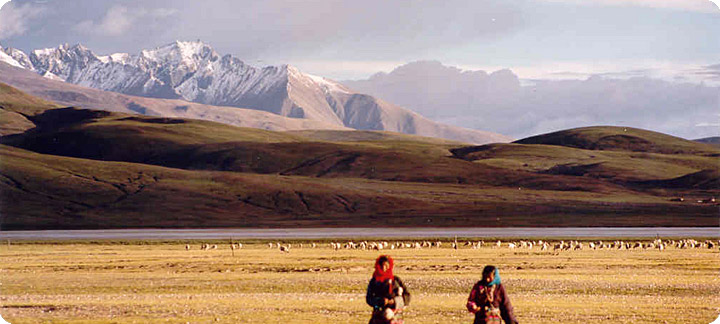 Life on the Tibetan plateau