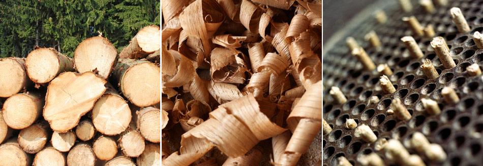 Westerwälder Holzpellets sind Natur pur!