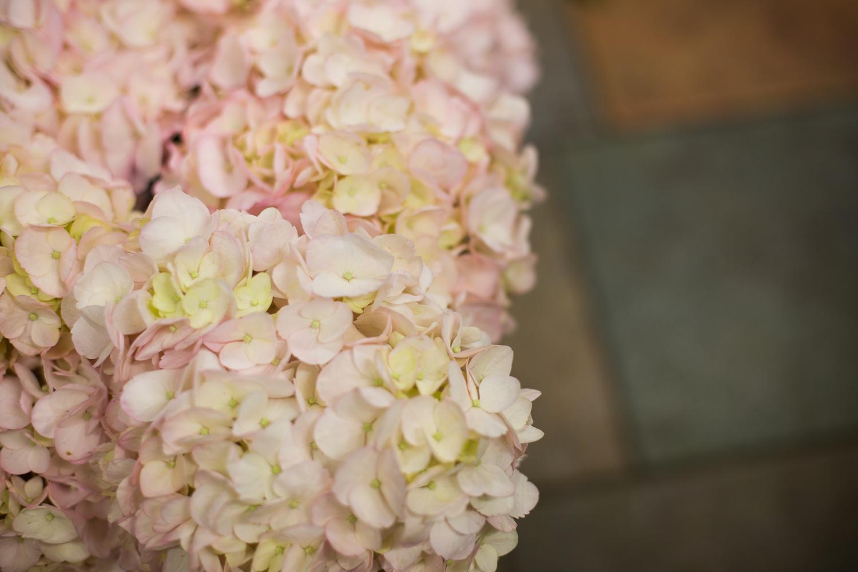 Fleuriste 50mm worked-61.jpg