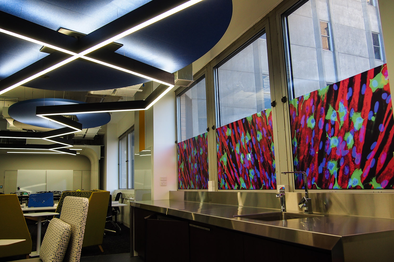 ACMD Advanced Biofabrication Centre