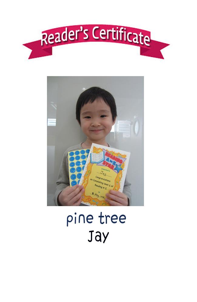 Reader's Certificate (long)-jay.jpg