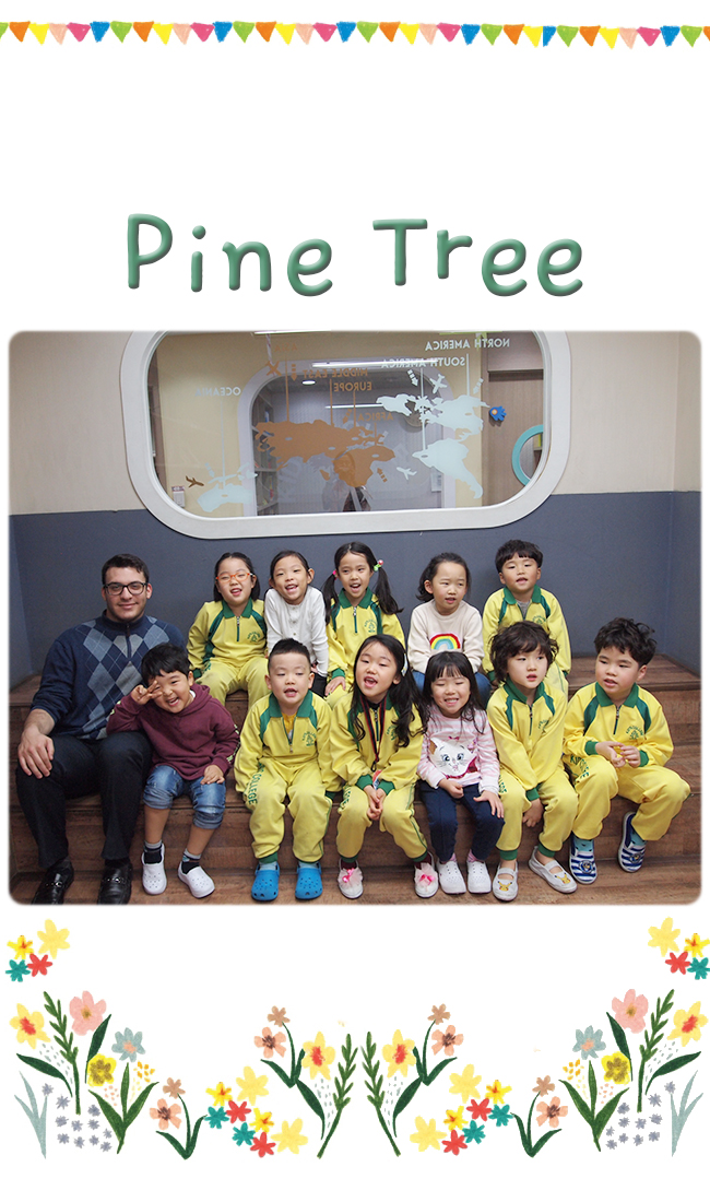 new class 2019_pine.jpg