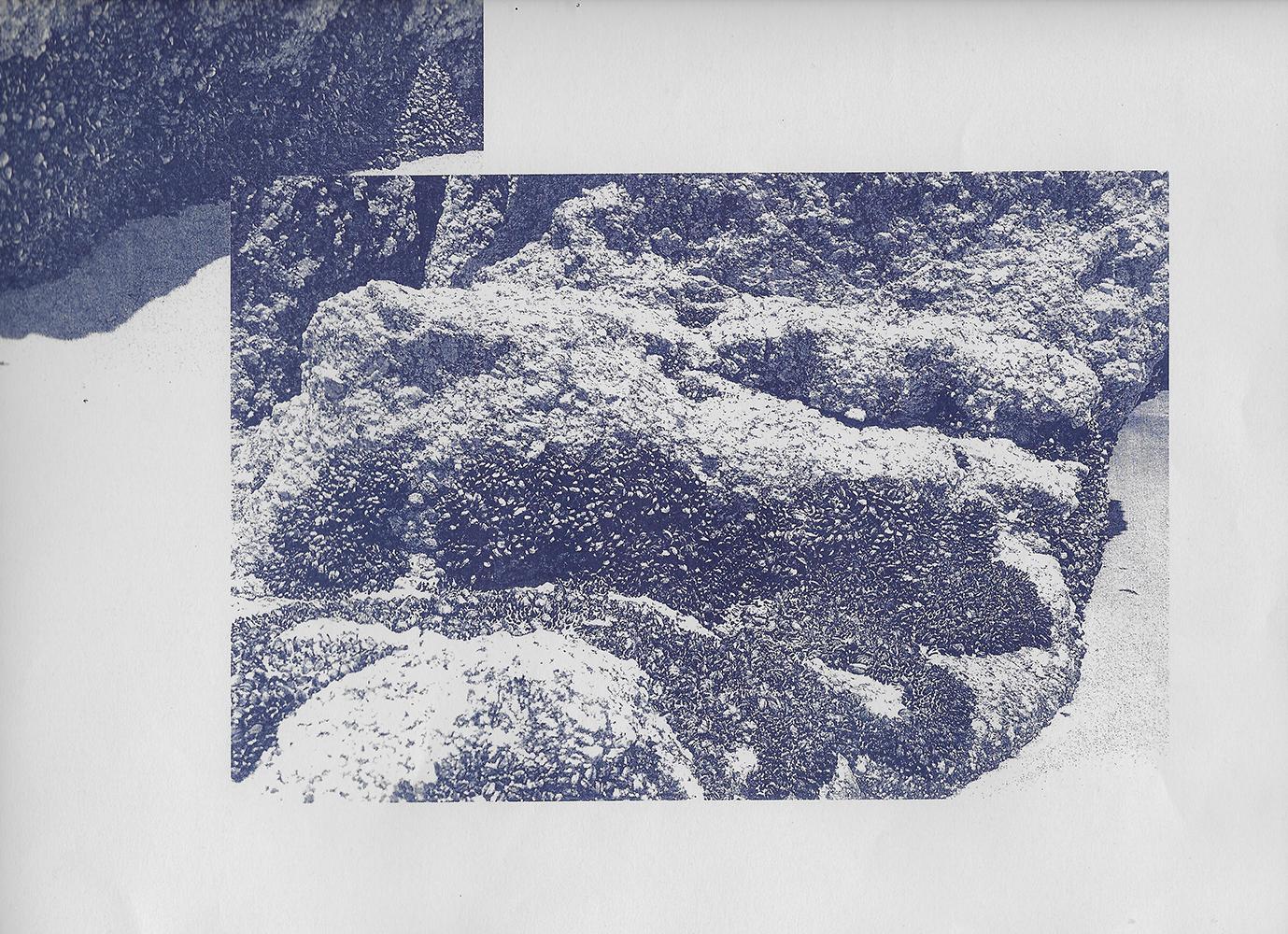 Scan+Riso+Print+01.jpg