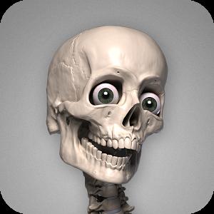 Skelly App Logo