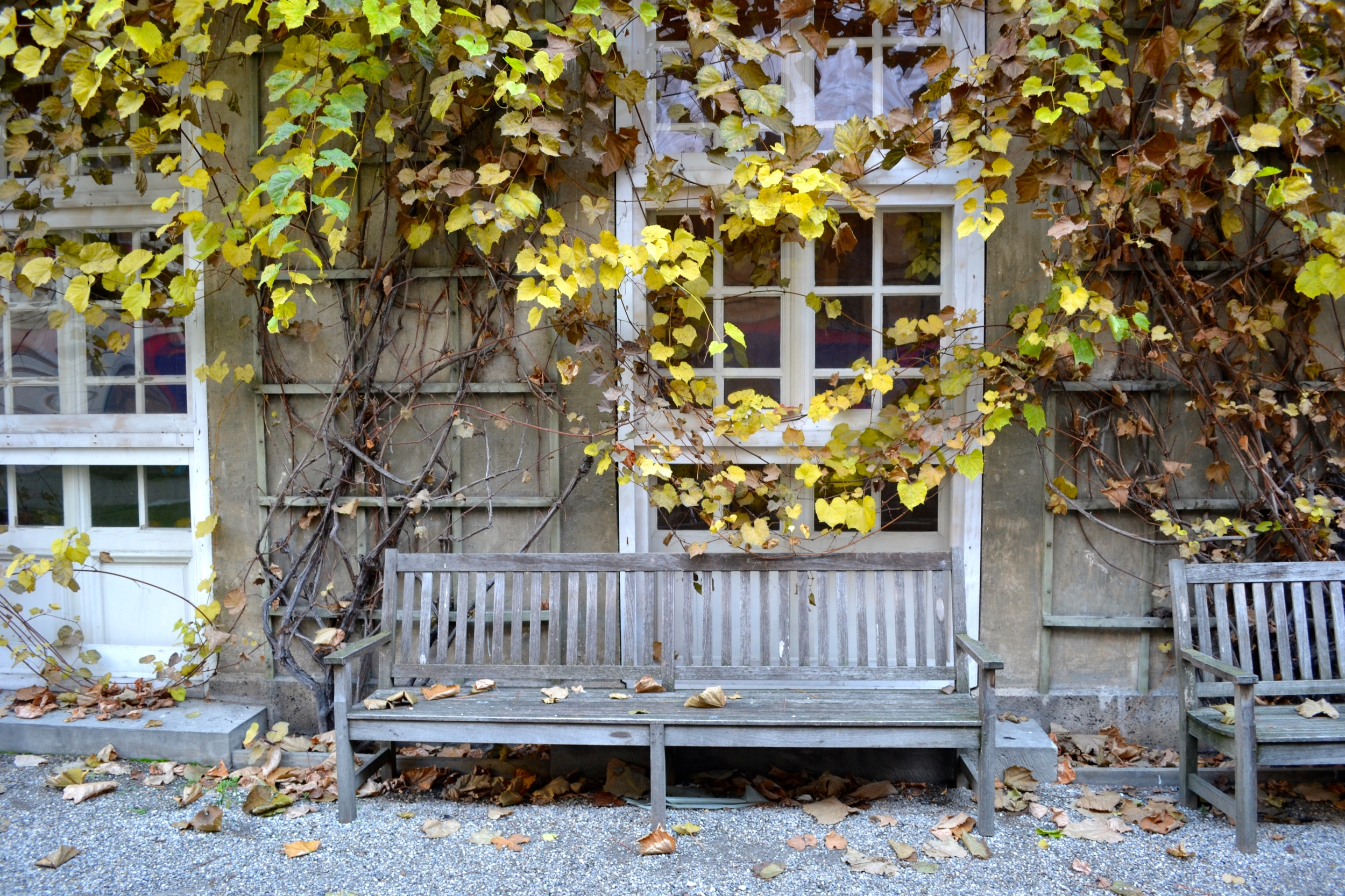 wooden-bench-autumn-leaves