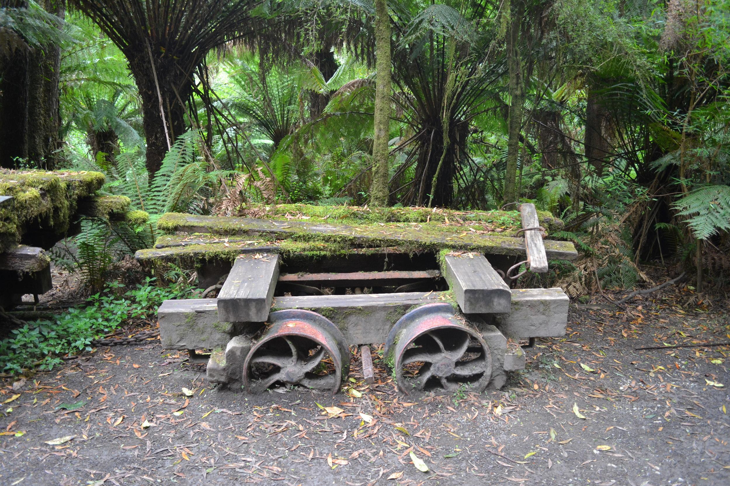otway-rainforest-abandoned-mine