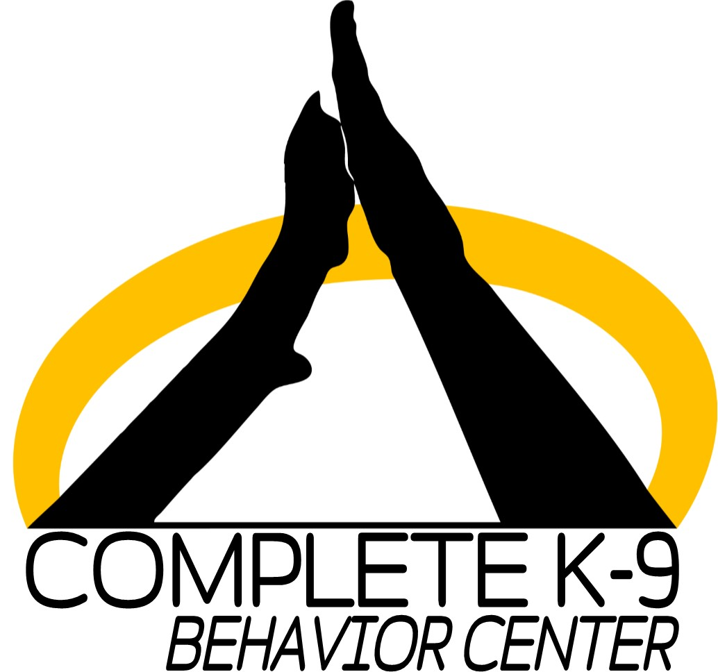 behavior center logo.jpg