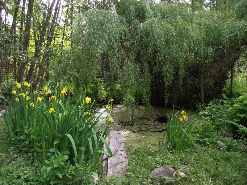 Garden&Willow2-sm.jpg