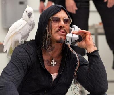 I want.... MY bird.