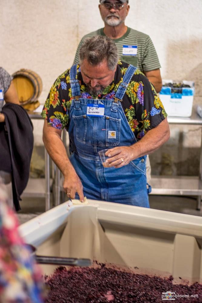 Kyle in Winery harvest 2015.jpg
