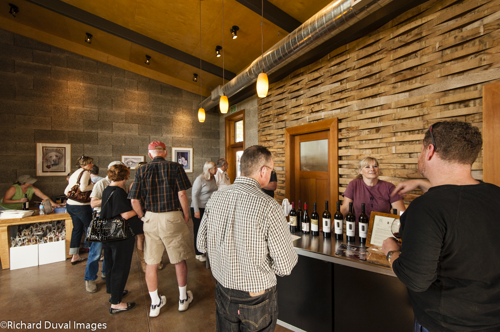 Busy Winery Shot.jpg