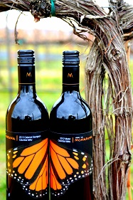 Merlot and Cab Full Butterfly in Vineyard2.jpg