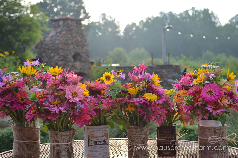 Assorted Zinnia, Calendula, Mint, Bee balm, Yarrow & Cosmos