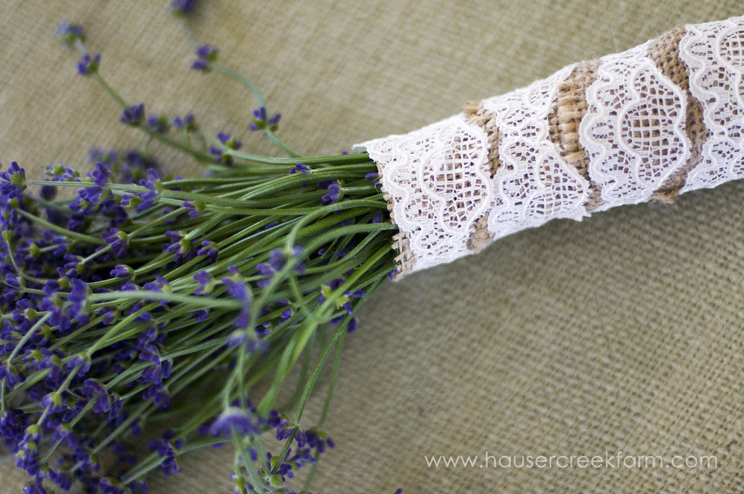 a-photo-of-fresh-lavender-bundle-wrapped-in-lace-by-ashley-06.jpg