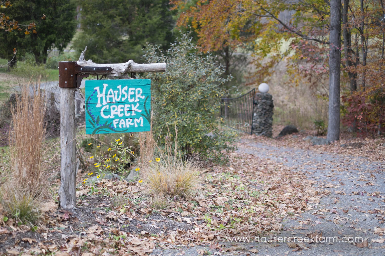 sign-at-hauser-creek-farm-photo-by-chris-fowler-1149color.jpg