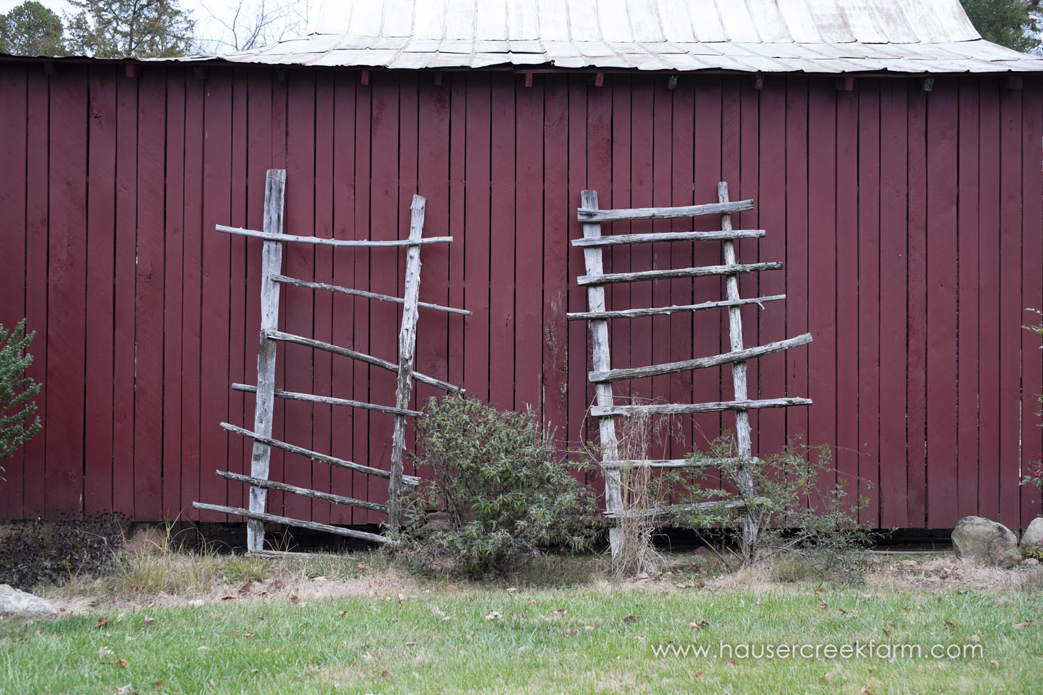 rustic-ladders-leaning-against-red-wall-of-farm-granary-photo-by-chris-fowler-1179color.jpg