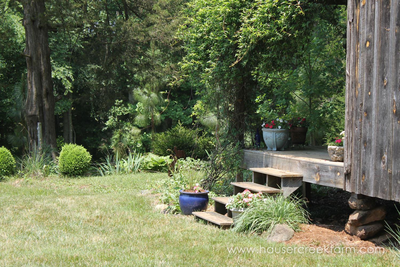 hauser-creek-farm-spring-open-farm-day-melody-watson-photo-1509.jpg