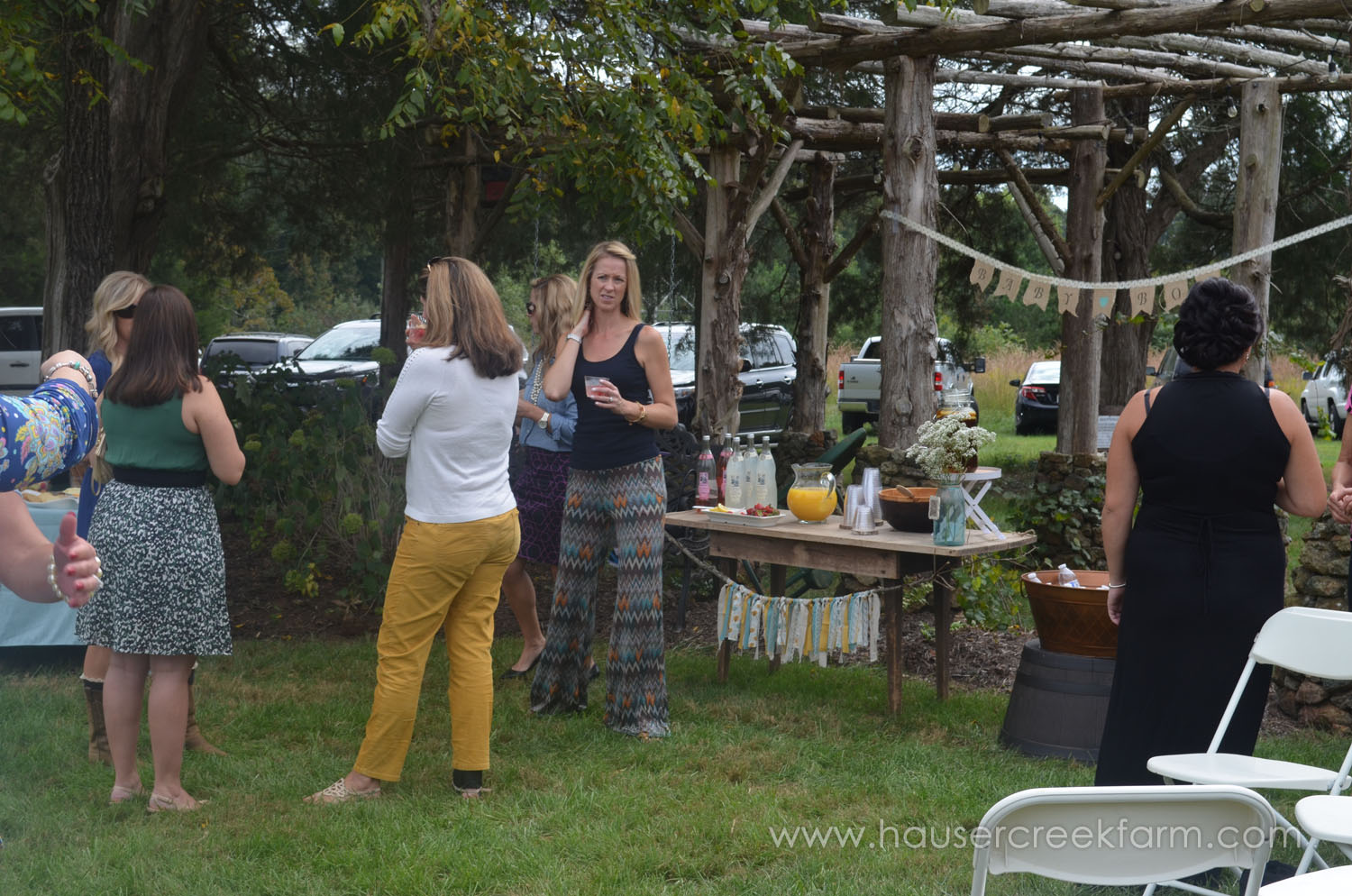baby-shower-for-faye-at-hauser-creek-farm-044.jpg