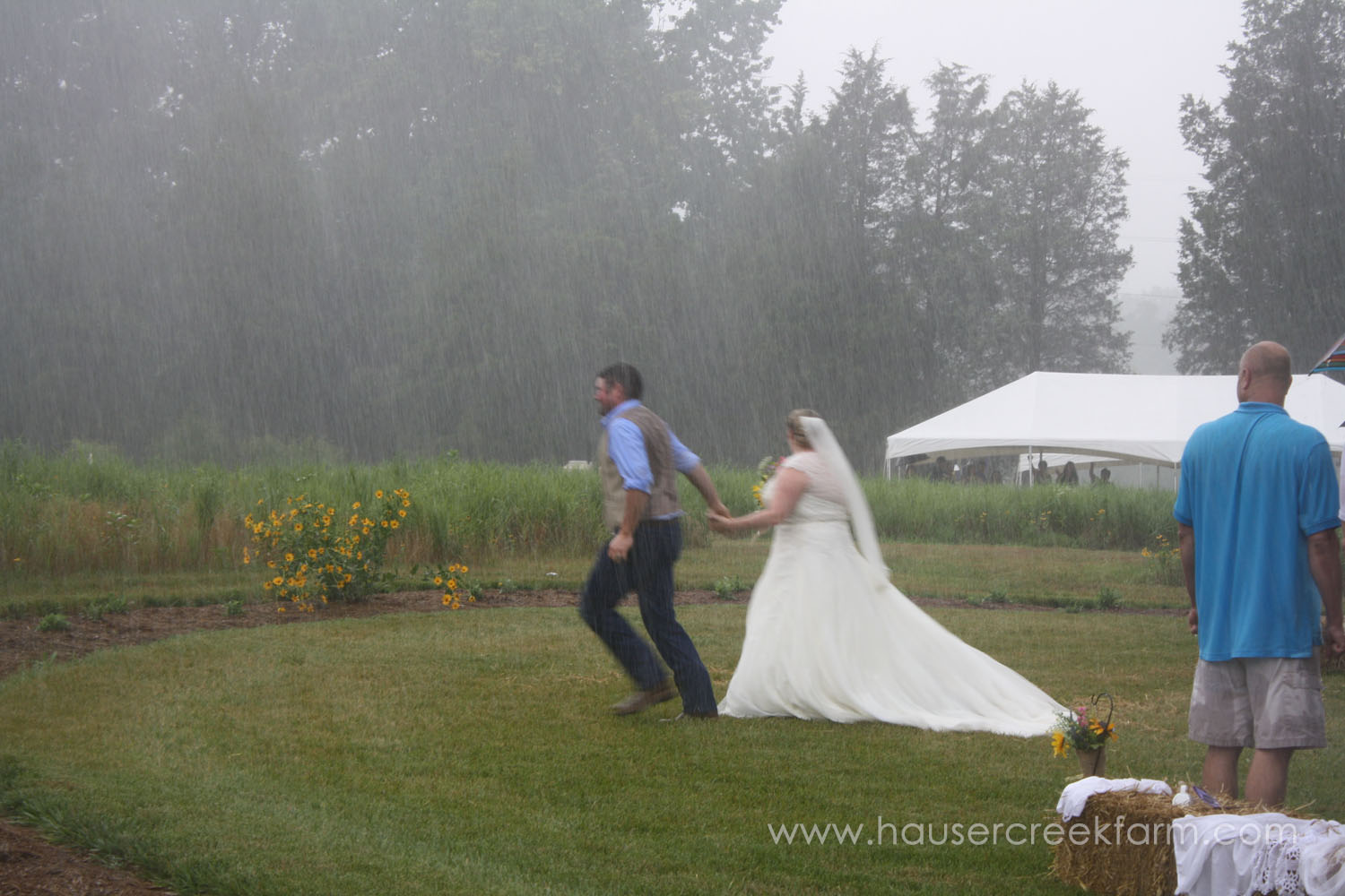 bride-and-groom-wedding-at-hauser-creek-farm-nc-4498.jpg