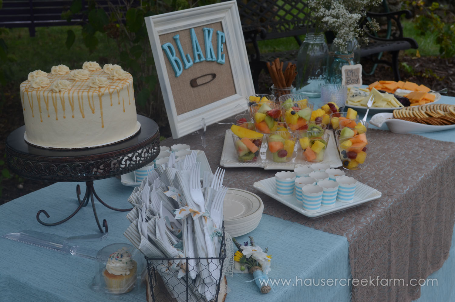 cake-and-fruit-and-cheese-for-afternoon-baby-shower-hosted-at-nc-farm-036.jpg