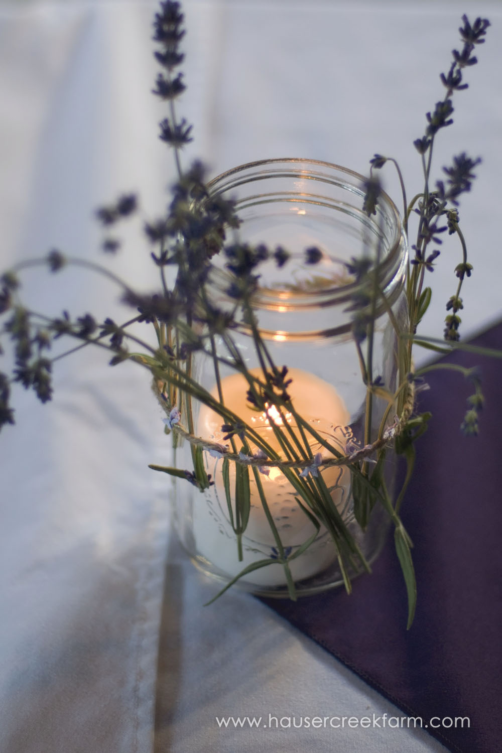 lavender-with-candle-in-jar-for-weddinga-photo-by-ashley-0888.jpg