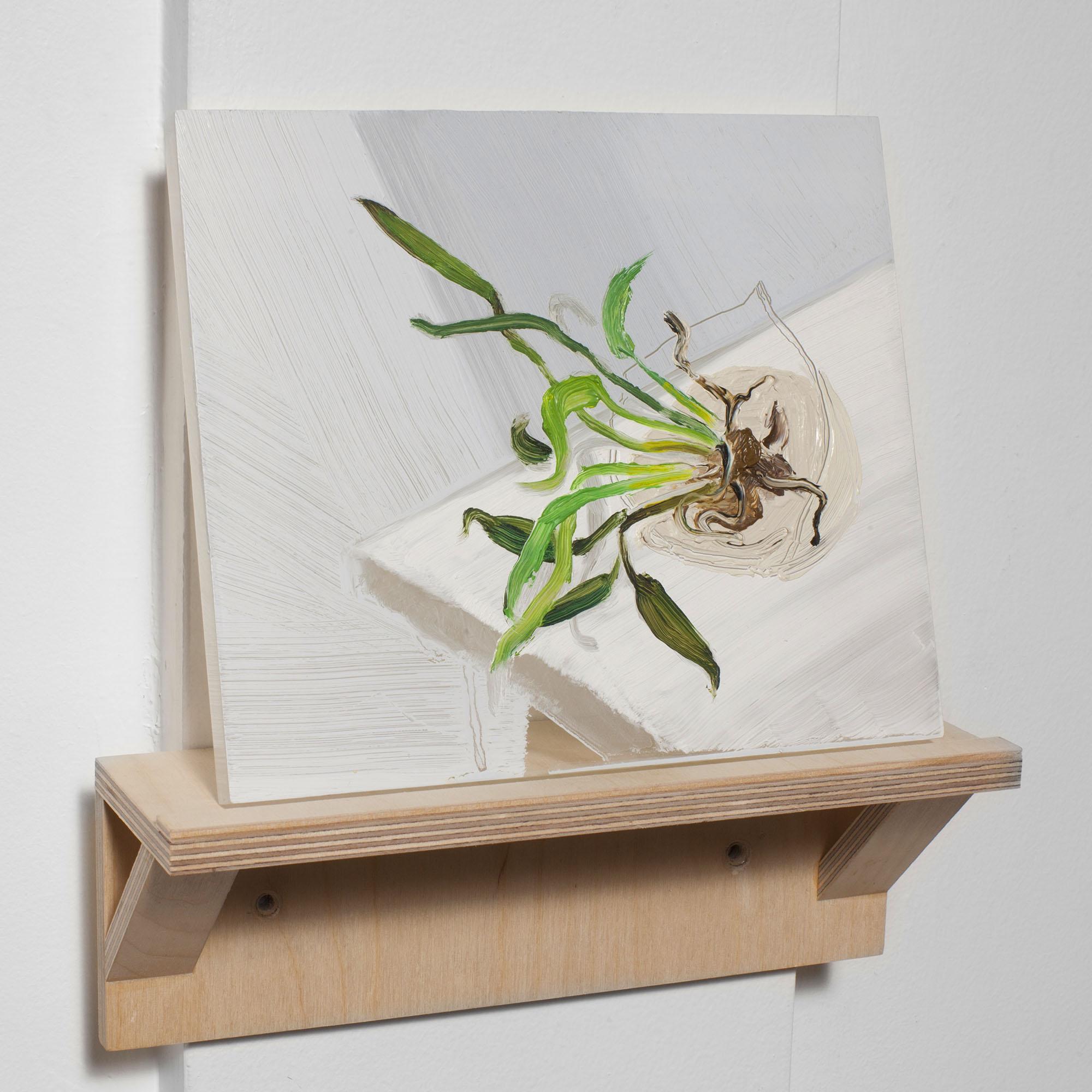 Near-Death Experience (Siamese Fighting Fish)    2015  8 x 8 x 0.5 inches  oil on half inch plexiglass, artist made birch shelf   ⬜     Experiência de Quase-Morte (Peixe de Luta Siamês)    2015  óleo sobre acrílico, prateleira de bétula  Pintura 20 x 20 x 1.27 cm., prateleira 10 x 25.5 x 9cm.
