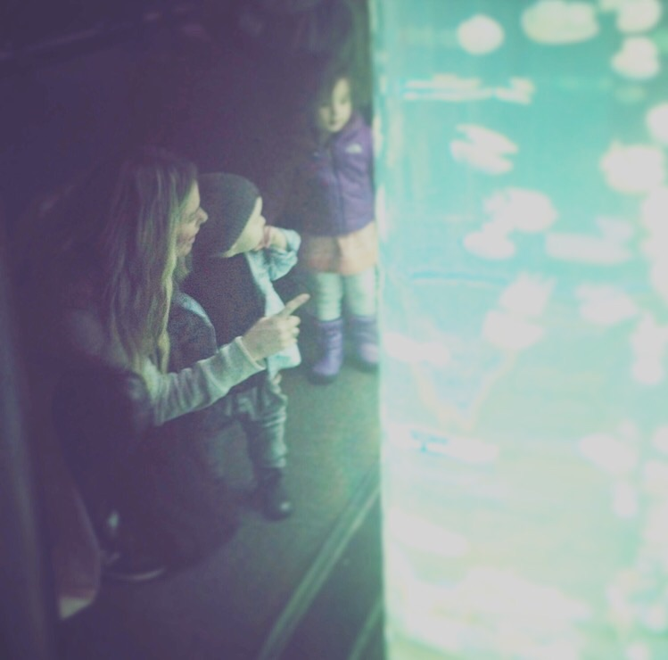 Checking out the fish at the Vancouvet Aquarium for the first time.