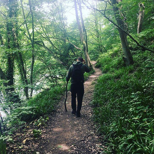 Everyone likes a good stick..... . . . . . #naturephotography #nature #hiking #hikingadventures #naturelovers #bushcraft #camping #woods #grounding #healing #planetearth #nature_seekers #naturehippys #natureporn #naturehippys_