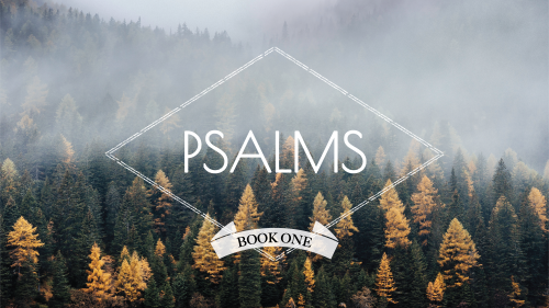 Psalms - Book 1 - Series Slide3.png