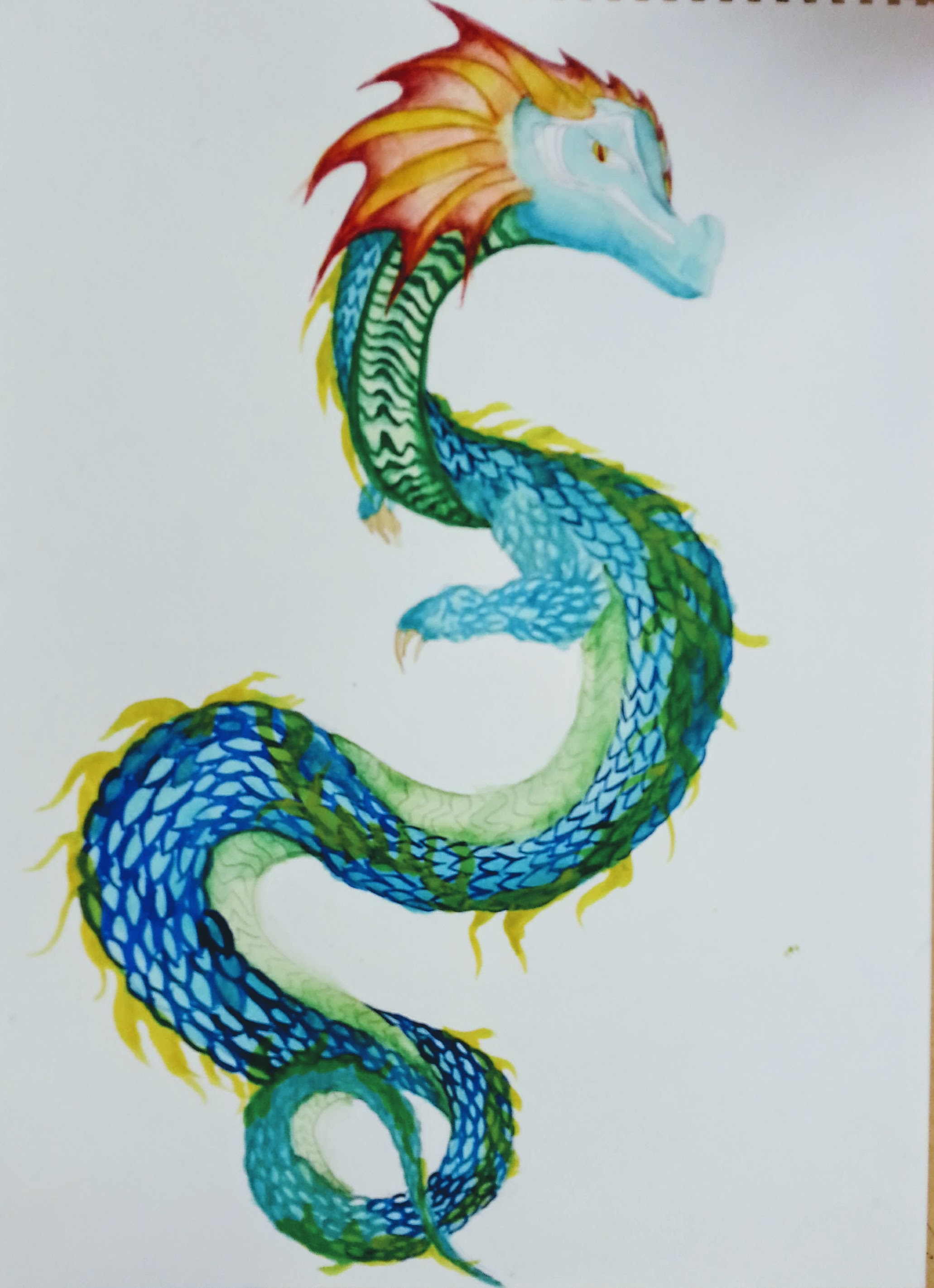 Watercolor_Dragon.jpg