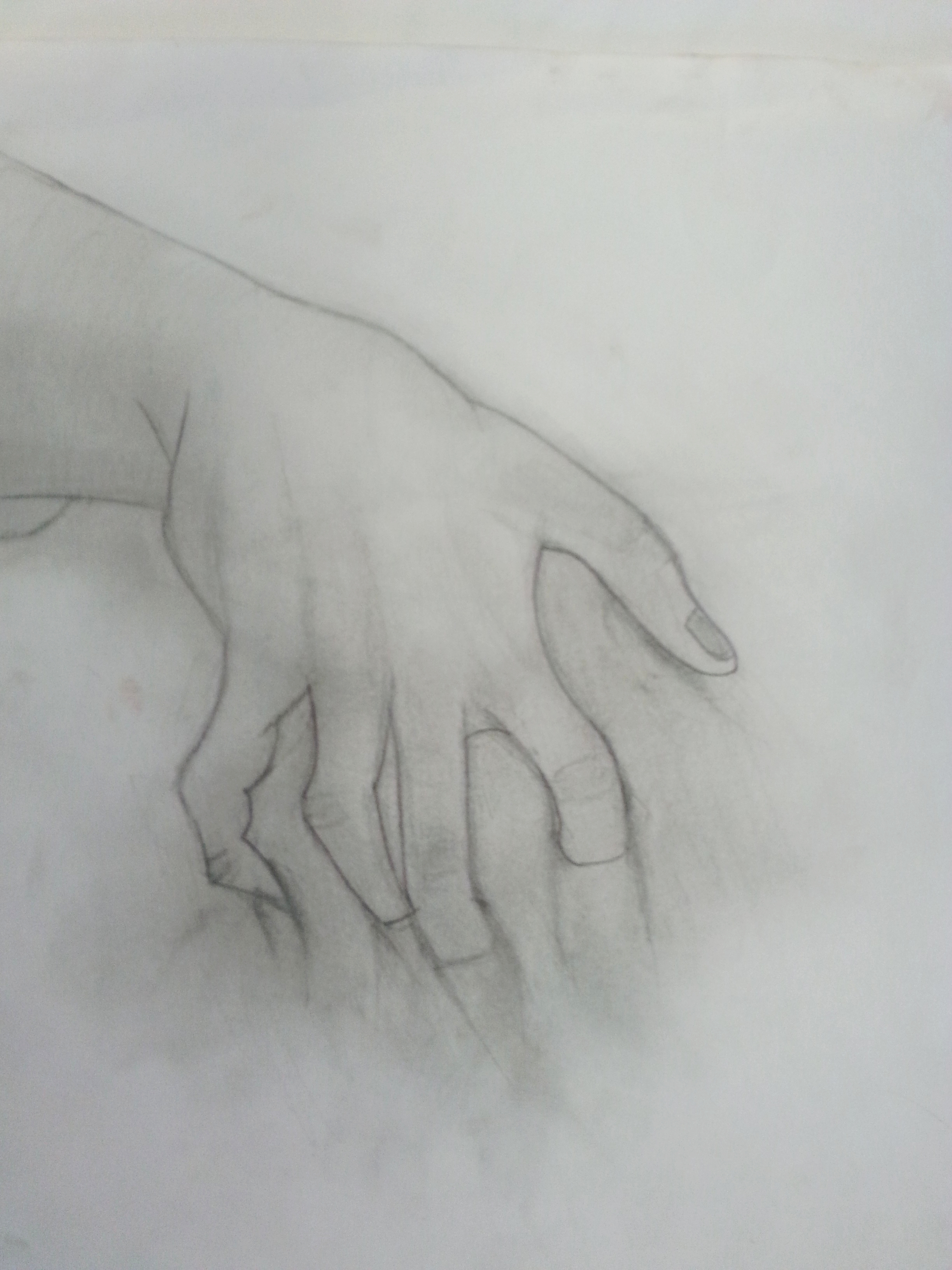 Hand Morph_Drawing.jpg