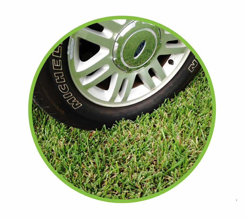 TRUEGRID Tire on Grass.jpg
