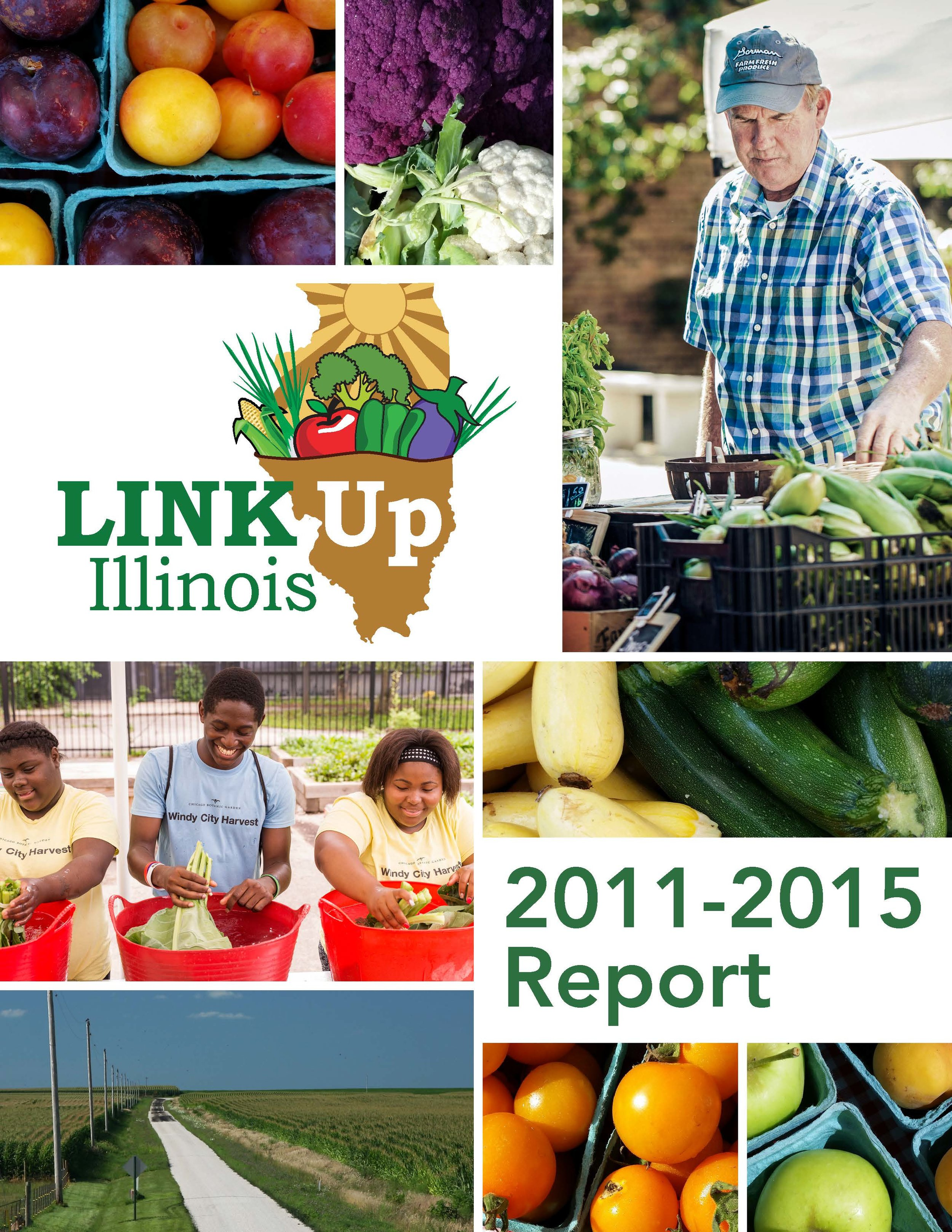 Link Up Report 2011-15